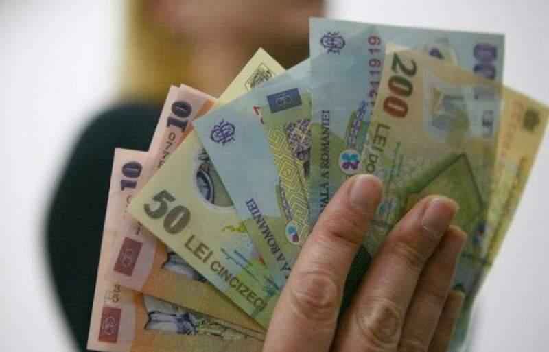 câștigați bani pe internet și transferați la qiwi
